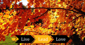 fall LiveLeadLove